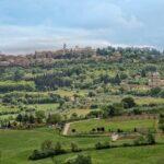 I vini Toscani: un simbolo della qualità italiana nel mondo